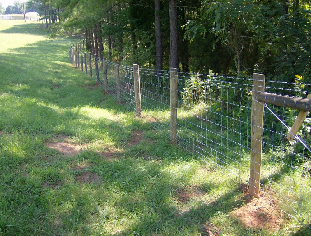 Fence Making 101 Kindergartenknowledge Com