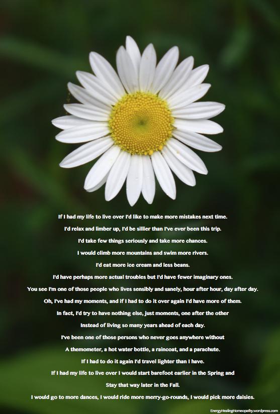 daisy-life-over-again