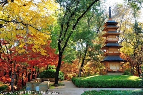 japanese-gardens-tower