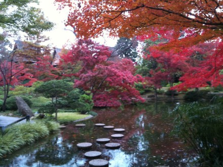 japanese-gardens-trees-and-pond