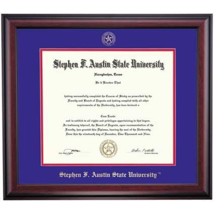 SFA diploma