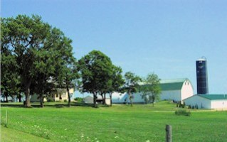 dairy farm two