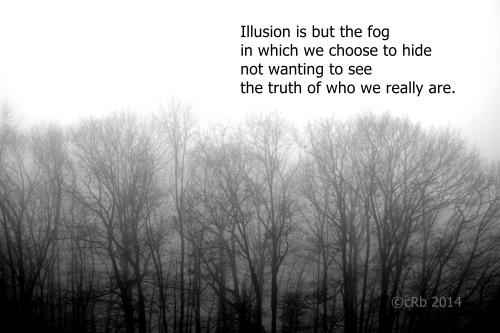 Illusion and Fog