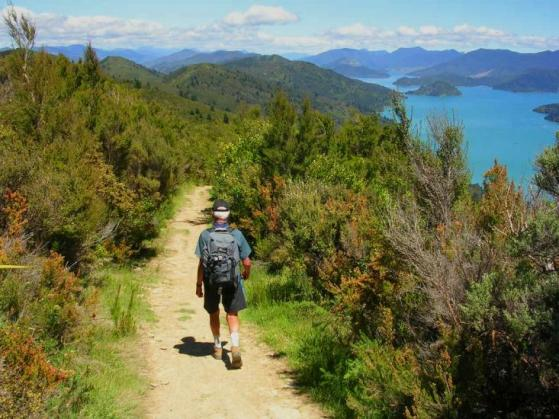 New Zealand trails