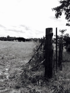 fence seven